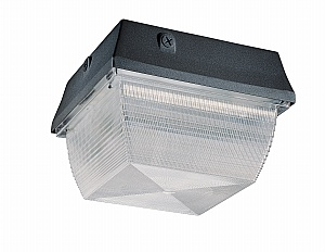 Nuvo Lighting 65 034r 2 Light 13 Watt Cfl Outdoor Wall Light Or Ceiling Light Fixture Iqlightingfixtures